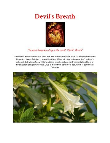 Devil's Breath