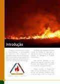 CARTILHA DE PREVENÇÃO E COMBATE A INCÊNDIOS - Page 6