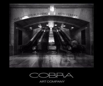 Cobra Art Book 2015