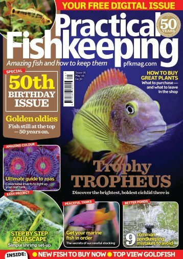 Practical Fishkeeping free digital issue