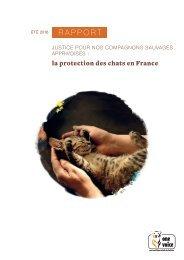 La protection des chats en France