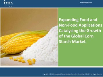 Corn Starch Market - Global Industry Analysis, Trends, Share, Size & Opportunities