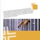Carta dei Servizi degli istituti penitenziari IT - Page 3