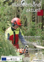 Waldverband aktuell - Ausgabe 2011-01