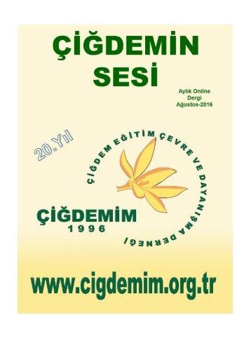 idemim-Sesi-Online-Dergi-agustos2016