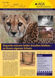 Geparde müssen leider draußen bleiben – zu ihrem eigenen Schutz