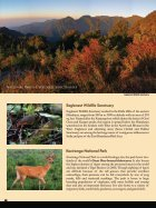 Jungle Travels India - Page 4