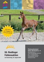 Fohlenauktionskatalog Riedlingen 2016