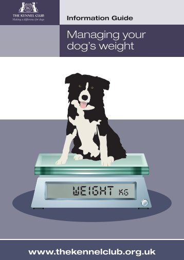 dog's weight