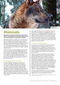 MAMMALS - Page 3