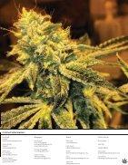 GreenLeaf Magazine - July 2016 - Page 5