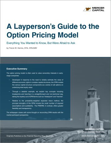 A Layperson's Guide to the Option Pricing Model