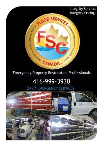 E-Brochure  FSC (CHAD)