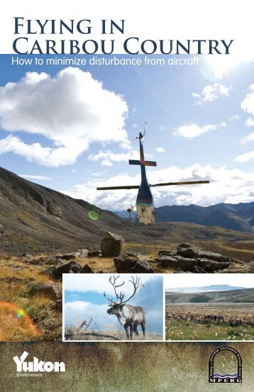 Flying in Caribou Country - Yukon Geological Survey - Government ...