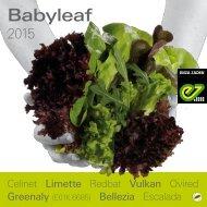 babyleaf brochure 2015