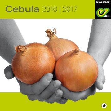 Cebula 2016-2017