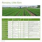 lettuce brochure 2015 - Page 6