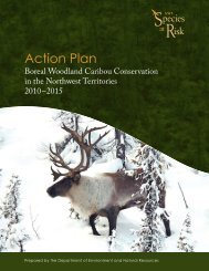 Action Plan for Boreal Woodland Caribou in the - Environment and ...