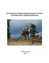 Three Decades of Caribou Recovery Program's in Yukon – A ...