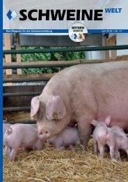 Schweine-Welt-Juni-2016-web