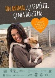 Guide pratique - Pourquoi adopter un animal de refuge