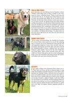 Tierfreund 15/01 - Seite 7