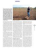 Su peso en oro - Page 2