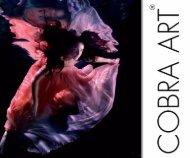 23 Cobra Art Book 2013 Autumn