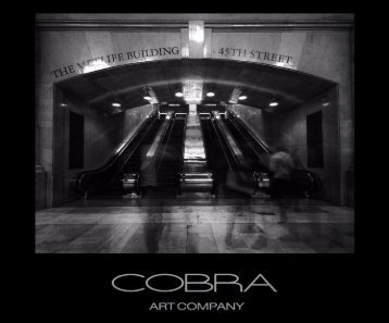 23 Cobra Art Book 2015