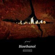 63 Glammfire bioethanol