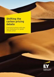 Shifting the carbon pricing debate