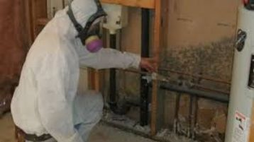 Mold Inspection Fort Lauderdale