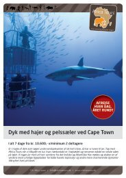 Dyk_med_hajer_og_pelssæler_ved_cape_town