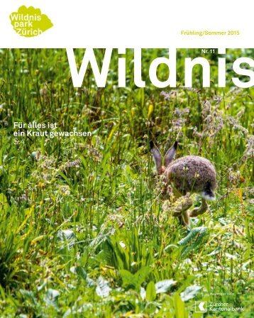 Wildnis Frühling/Sommer 2015