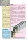 Künstliche Befruchtung Diagnosen an Embryonen Klonen Euthanasie - Seite 5