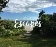 New Forest Escapes_Host With Us
