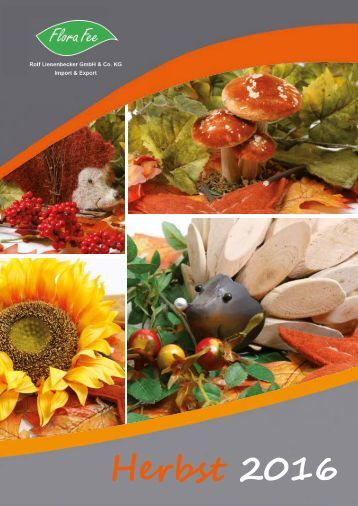 Katalog Herbst 2016   Flora Fee
