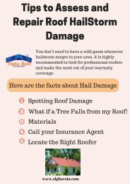 Tips to Assess and Repair Roof HailStorm Damage