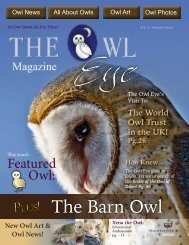 owl_eye_issue4_online