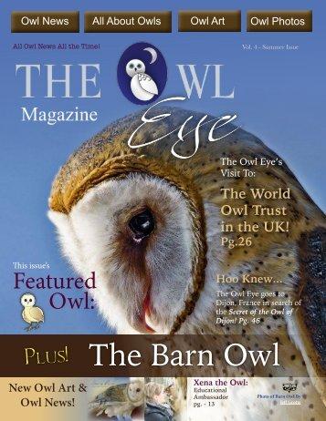 owl_eye_issue4_online