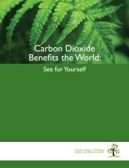 Carbon Dioxide Benefits the World