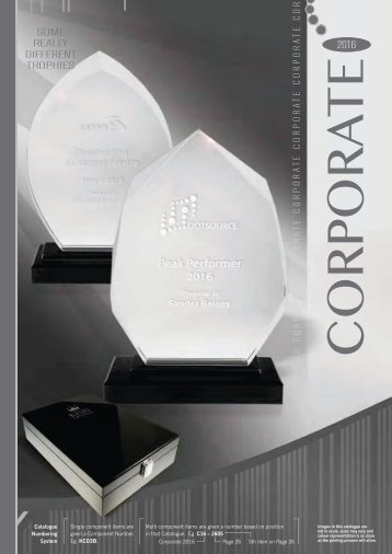 Some Really Different Corporate Trophies 2016