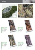 Exoten Trendartikel 2016   Flora Fee - Page 6