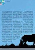 Klimawandel im südlichen Afrika - Seite 4