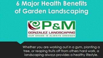 6 Major Health Benefits Of Garden Landscaping