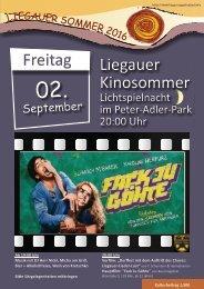 Plakat LA Lichtspielnacht 2016