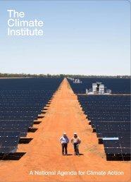The Climate Institute