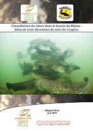 Rapport silure Rhône 2016 VF