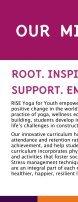 RISE 2015 - 2016 Program report FINAL - Page 3
