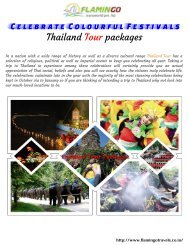 Must Visit Thailand Tour Packages for Enjoy Colorful Festival